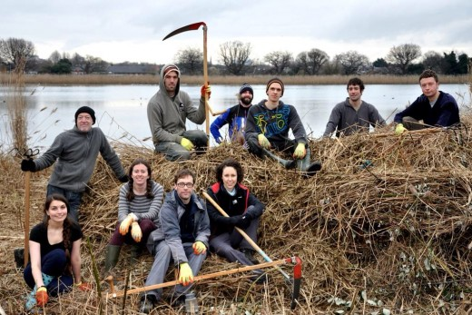 Volunteers at Woodberry Wetlands